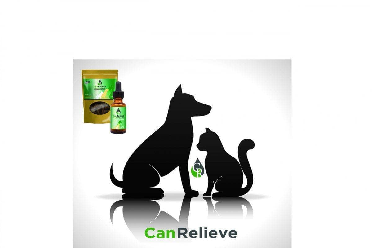Stressed Pet? CBD Could Be The Answer