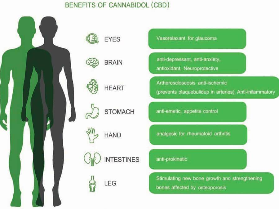 CanRelieve - What is CBD cannabidoil