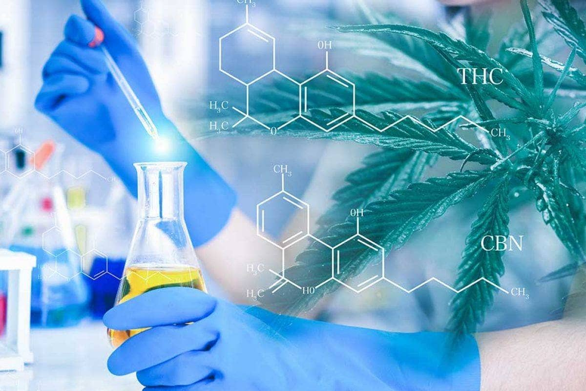How Is CBD Oil Manufactured?